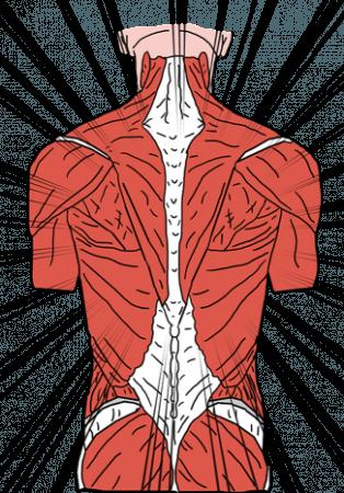 ondt i ryggen